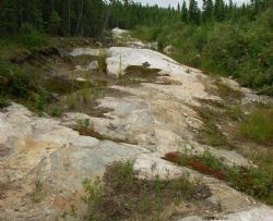 Figure 5. Photo looking west along the Root Lake pegmatite