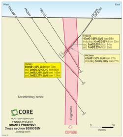 Figure 2. Cross-Section 8599035N, Grants Prospect, Finniss Lithium Project, NT.