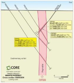 Figure 4. Cross-Section 8599035N, Grants Prospect, Finniss Lithium Project, NT.