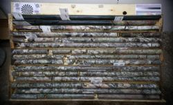 Drill Core from MF-17-39