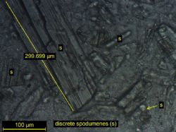 Images of course Spodumene partials from thin section sample M221 JR002 -500