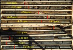 Diamond core from HRDD006 showing high-grade gold results from 78.8m -87.8m(ppm =g/t Au)
