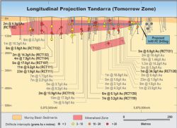 Longitudinal projection of Tomorrow Gold zone showing panel drilled in 2017