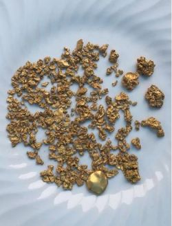 "Selection of nuggets recovered by metal detecting by Great Sandy Pty Ltd (""Great Sandy"") and KS Gold Pty Ltd (""KS Gold"") at the Singer prospect, DOM's Hill Project, E45/4722."