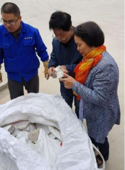 Ardiden Director, Dr. Michelle Li inspecting the bulk sample of spodumene material at Yantai