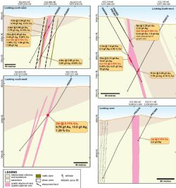 Cross-sections of drillholes with significant Co mineralisation at the Kidman Prospect.