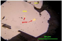Gold inclusions in arsenopyrite (asp). TGGDD090, 135.02m downhole.