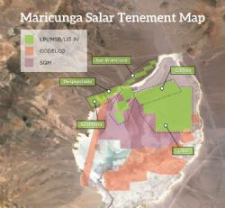 Maricunga Salar Tenement Map