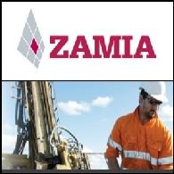 Zamia Metals (ASX:ZGM)