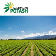 Australian Potash Ltd (ASX:APC)盐场制取的盐投入第一批硫酸钾生产