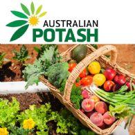 Australian Potash Ltd (ASX:APC) 按比例可棄權附加股的發行結果
