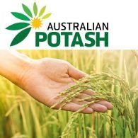 Australian Potash Ltd (ASX:APC) 季度活動報告