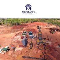 Inbetriebnahme der Modernisierten Rubinanlage durch Mustang Resources Ltd (ASX:MUS) (FRA:GGY) Macht Gute Fortschritte