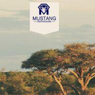 Mustang Resources Ltd (ASX:MUS) Quartalsbericht - Aktivitäten zum 30. Juni 2017