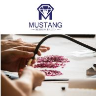 Quartalsbericht der Mustang Resources Ltd (ASX:MUS)