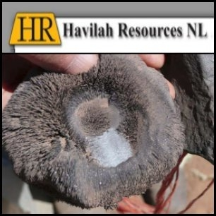 Havilah Resources NL (ASX:HAV) Releases Mutooroo Copper-Cobalt Deposit Resource Statement