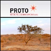 Proto Resources And Investments Limited (ASX:PRW)