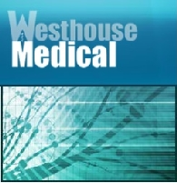 Westhouse Medical Services plc (WMB5:G4)