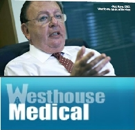 Westhouse Medical Services Plc (FRA:5WM) 