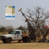 West African Resources Limited (ASX/TSXV:WAF) Report High Grade Gold Results from Mankarga 5 Deposit