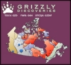Grizzly Discoveries Inc. (CVE:GZD) Enters Into Memorandum of Understanding Regarding Alberta Potash Project