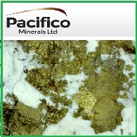 Pacifico Minerals Limited (ASX:PMY) Quarterly Activities Report