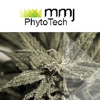 MMJ PhytoTech Ltd (ASX:MMJ) Unlocking Near-Term Value and Optimising Assets for Growth