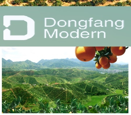 Dongfang Modern Agriculture Company