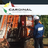 Cardinal Resources Ltd (ASX:CDV) 370m Extensive Gold Mineralised Zone from Surface