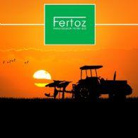 Fertoz Ltd (ASX:FTZ) Completes $4.35 Million Private Placement
