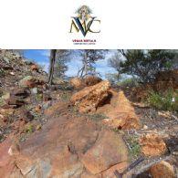 Venus Metals Corporation Limited (ASX:VMC) Heli EM Survey commences at Greenbushes East VMS Project