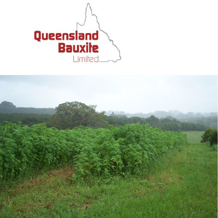 Australias largest hemp food production underway