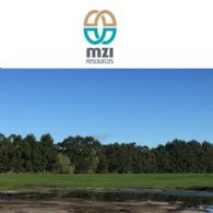 MZI Resources Ltd (ASX:MZI) Quarterly Activities Report