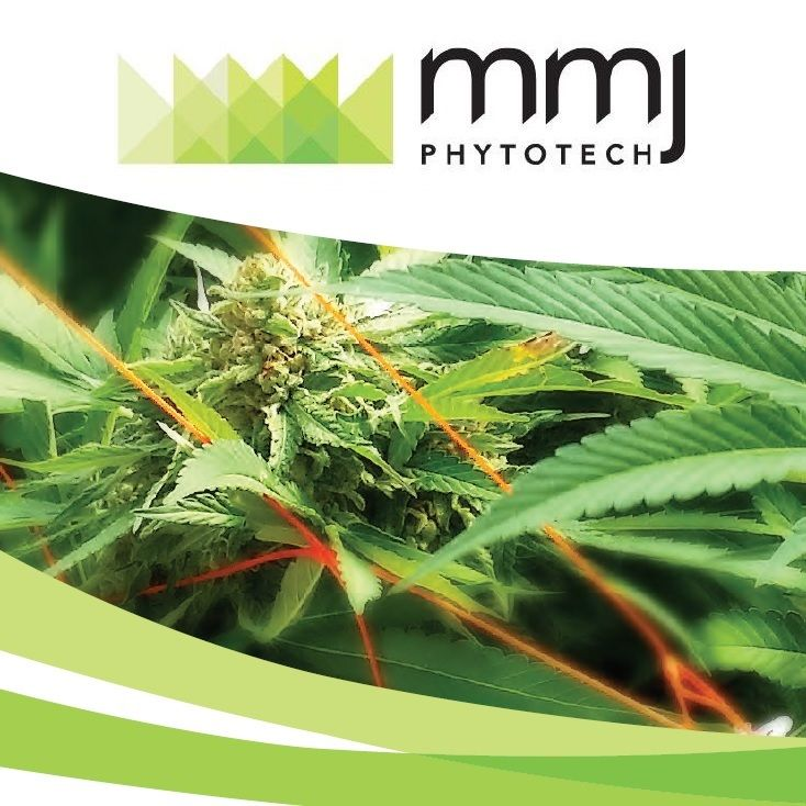 MMJ to Acquire Strategic Position in Dosecann Inc