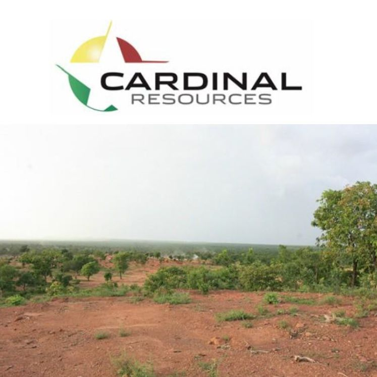 Cardinal Upgrades Indicated Mineral Resource to 6.5Moz