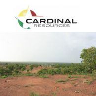 Cardinal Resources Ltd (ASX:CDV) (TSE:CDV) Hits More High-Grade Shallow Gold at Ndongo East