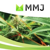 MMJ Group Holdings Ltd (ASX:MMJ) Investment in Trichomia