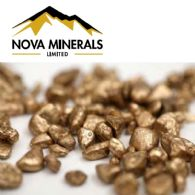 Nova Minerals Ltd (ASX:NVA) IP Survey Confirms Large Gold Target at Estelle