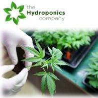 The Hydroponics Company Ltd (ASX:THC) Positioned for Canadian Recreational Cannabis