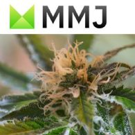 MMJ Group Holdings Ltd (ASX:MMJ) Investment Portfolio Report
