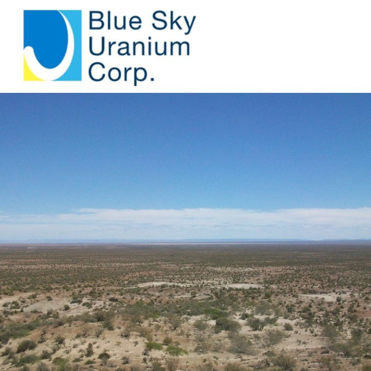 Uranium Sector and the Company's Project in Southern Argentina