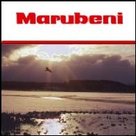 Marubeni Corp.(TYO:8002)