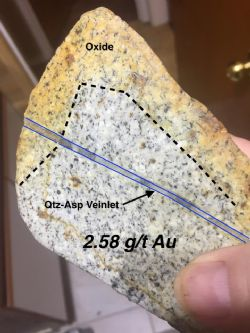 Quartz Arsenopyrite Veinlet hosted but Granitoid Intrusive