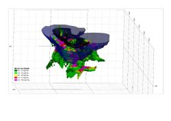Schematic perspective view of Goongarrie Lady gold deposit resource block model looking NNE