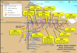 Long Section of Rose of Denmark – Latest Drilling Results