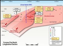 Currans Find North Longitudinal Section