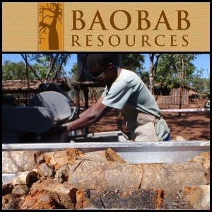 Baobab Resources plc (LON:BAO)公布Monte Muande合资项目勘探目标