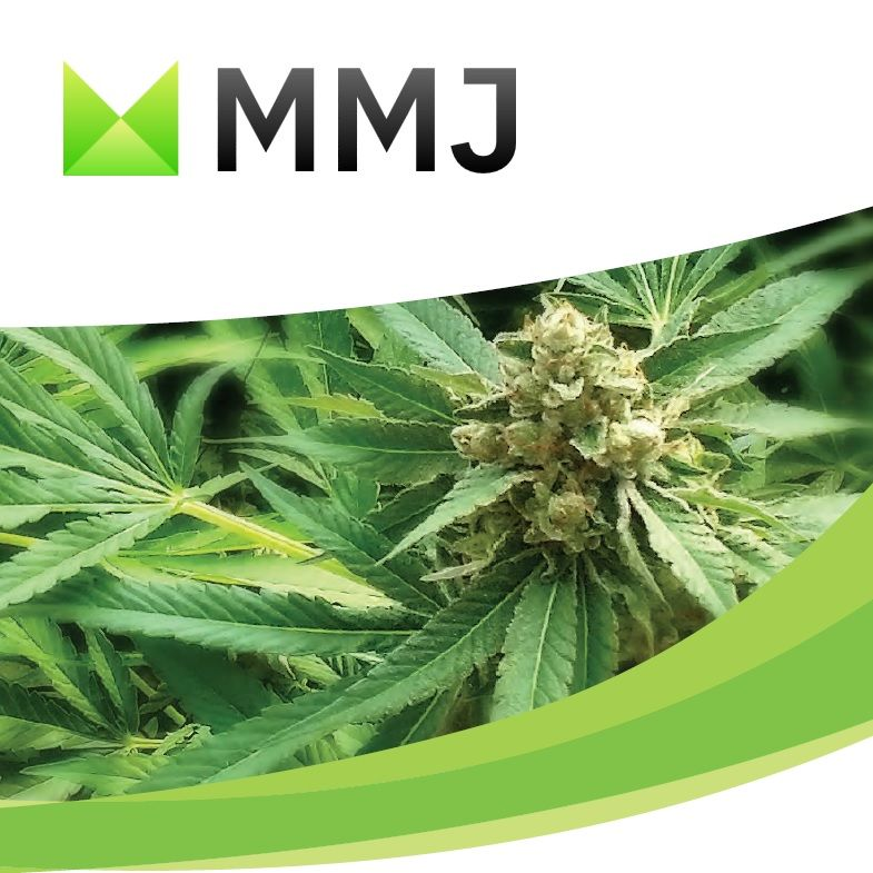 MMJ Embark Ventures Presentation