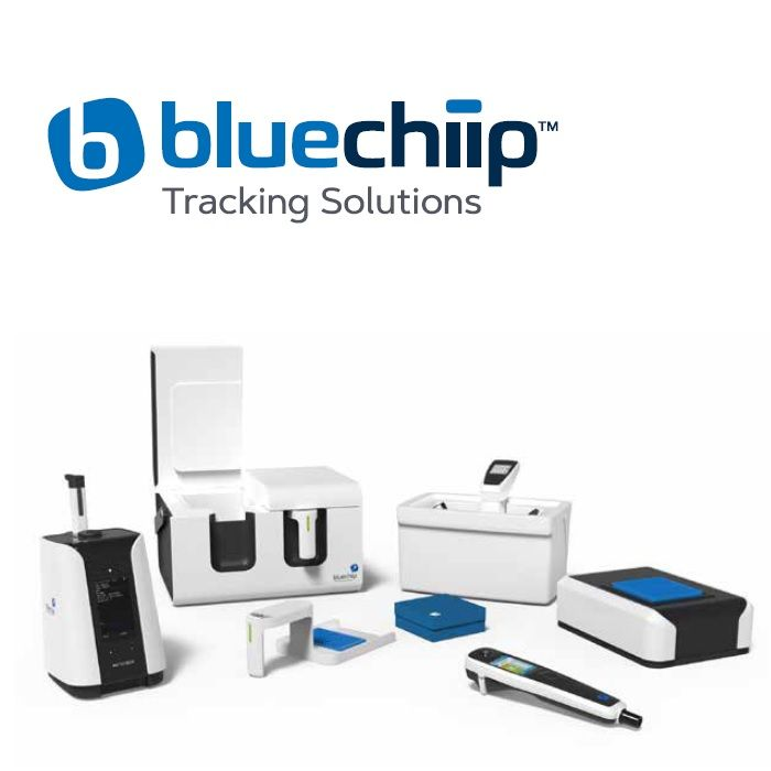Bluechiip raises $4.6M and announces SPP