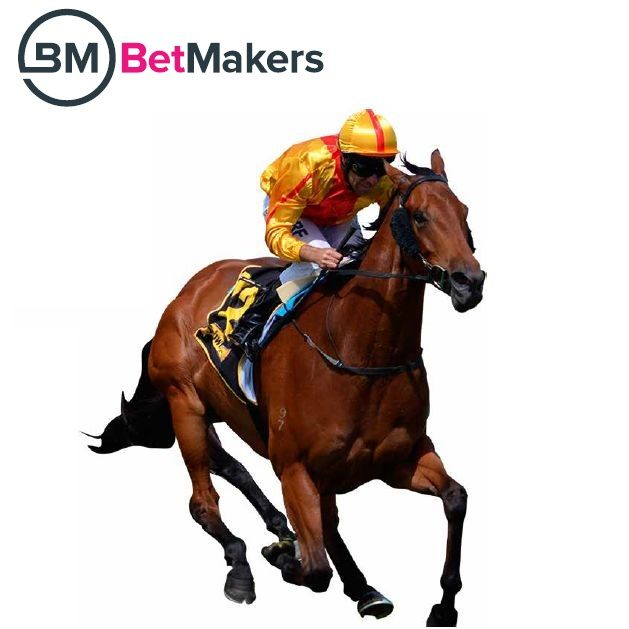 New online bookmakers powered by BetMakers
